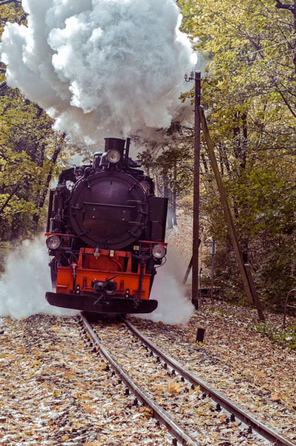 Lössnitzgrundbahn Radebeul