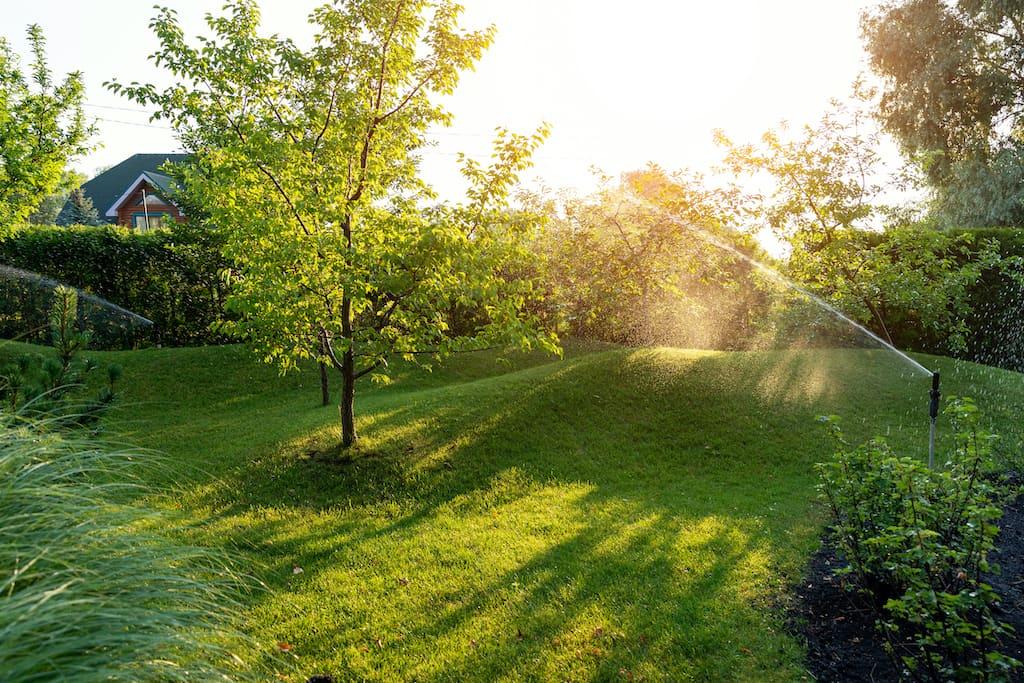 Landschaftsgestaltung mit Obstgarten